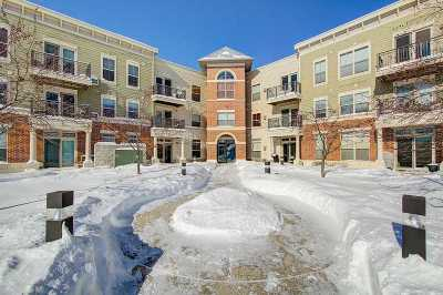 Sun Prairie Condo/Townhouse For Sale: 2581 Smith's Crossing #103
