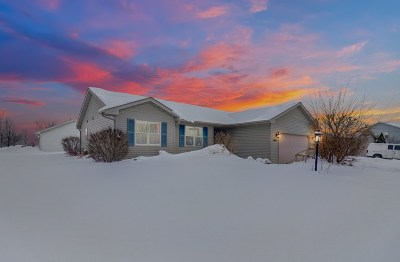 Sun Prairie Single Family Home For Sale: 1463 Prairie Rose Dr