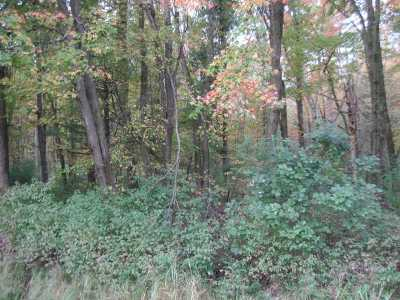 Arkdale Residential Lots & Land For Sale: 3.25 Ac Hwy 13