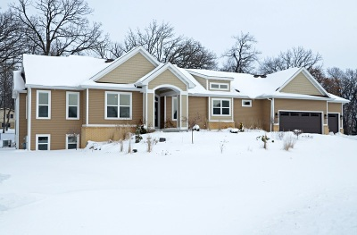 Sun Prairie WI Single Family Home For Sale: $589,900