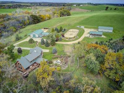 Iowa County Single Family Home For Sale: 1671 County Road K