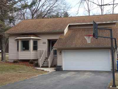 Wisconsin Dells Single Family Home For Sale: 1540 Michigan Ave