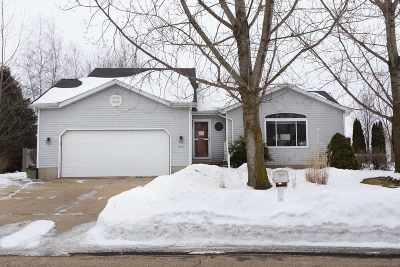 Dane County Single Family Home For Sale: 911 Riverview Ct