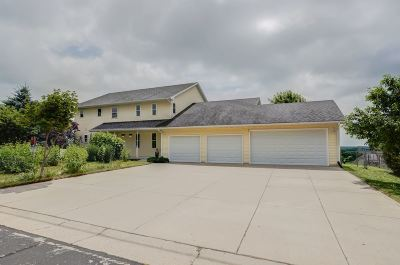 Dane WI Single Family Home For Sale: $369,000