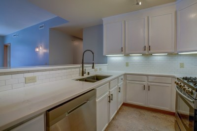 Madison Condo/Townhouse For Sale: 360 W Washington Ave #709