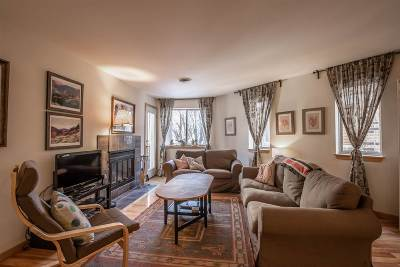 Madison Condo/Townhouse For Sale: 311 N Hancock St #229