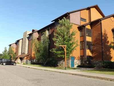 Wisconsin Dells Condo/Townhouse For Sale: 2504 River Rd #7317