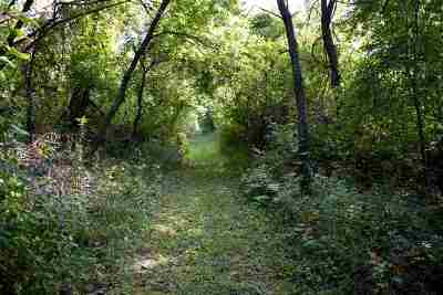 Verona Residential Lots & Land For Sale: L41 Ox Trail Way