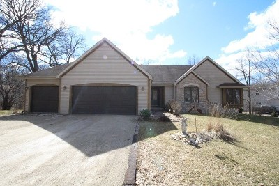 Walworth County Single Family Home For Sale: N7496 Mariner Hills Cir