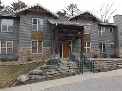 Wisconsin Dells Condo/Townhouse For Sale: 407 Clara Ave #114