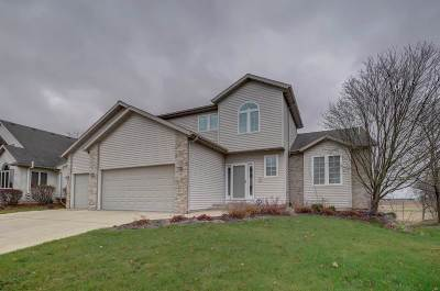 Dane County Single Family Home For Sale: 1261 Virgin Lake Dr