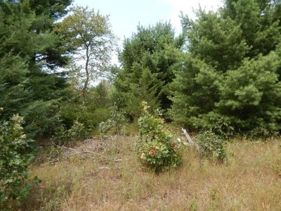 Wisconsin Dells Residential Lots & Land For Sale: L1 Gillette Ln