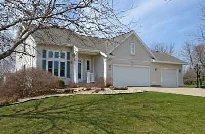 Sun Prairie Single Family Home For Sale: 6697 Parkway Dr