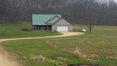 Green County Single Family Home For Sale: W6060 Durst Rd