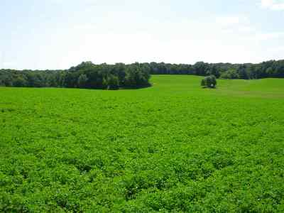 Verona Residential Lots & Land For Sale: 75.60 Ac County Road G