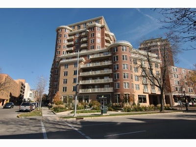 Madison Condo/Townhouse For Sale: 333 W Mifflin St #2150