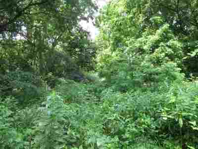 Wisconsin Dells Residential Lots & Land For Sale: 321 Freedom Ln