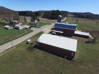 Richland Center Single Family Home For Sale: 20671 County Road Sr