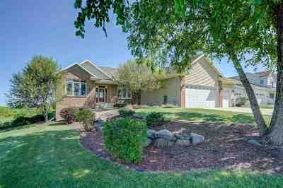 Dane County Single Family Home For Sale: 2964 Nessie Ln