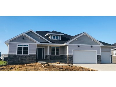Cottage Grove Single Family Home For Sale: 3012 Red Hawk Tr