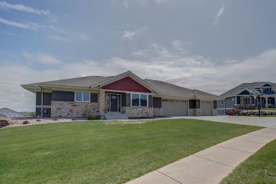 Mount Horeb Single Family Home For Sale: 1833 Danny Dr