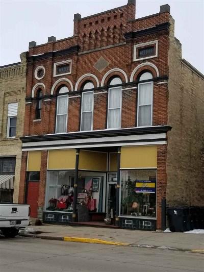 Waterloo Commercial For Sale: 129 N Monroe St