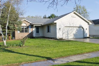 Dane County Single Family Home For Sale: 805 Brookview Tr