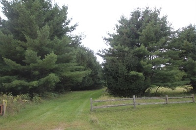 Residential Lots & Land For Sale: N8206 5th Ln