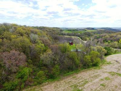 Iowa County Single Family Home For Sale: 2078 Fairview Rd