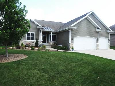 Dane County Single Family Home For Sale: 350 Meadow Crest Tr