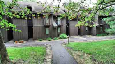 Wisconsin Dells Condo/Townhouse For Sale: 7 Fir Tr