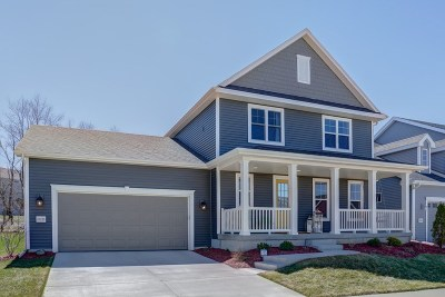 Verona Single Family Home For Sale: 10235 Meandering Way