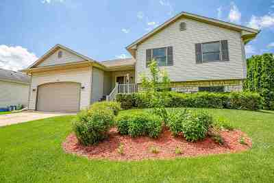 Mount Horeb Single Family Home For Sale: 704 Brookview Tr