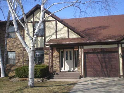 Sauk City WI Condo/Townhouse For Sale: $124,900