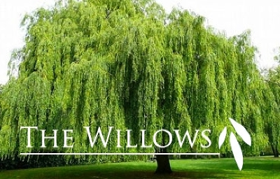 Madison Residential Lots & Land For Sale: L28 Willows