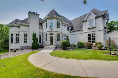 Dane County Single Family Home For Sale: 2933 Windswept Way