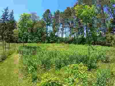 Verona Residential Lots & Land For Sale: 7241 County Highway Pd