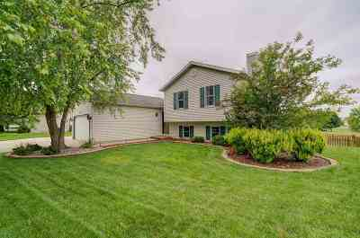 Dane County Single Family Home For Sale: 901 Sunset Dr