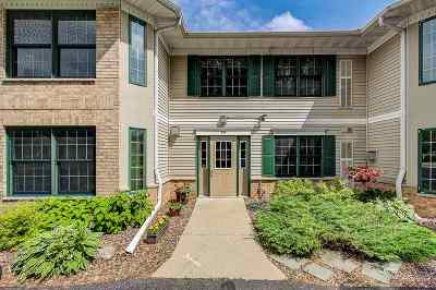 Waunakee Condo/Townhouse For Sale: 5397 Blue Bill Park Dr #12