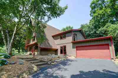 Dane County Single Family Home For Sale: 4 Quinn Cir