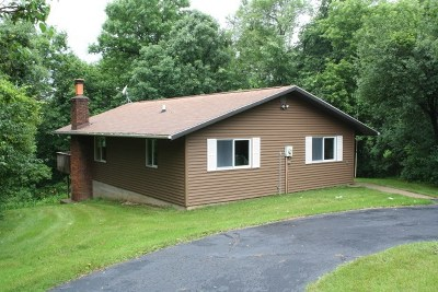 Iowa County Single Family Home For Sale: 1290 East Lake Rd