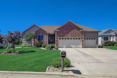 Cottage Grove Single Family Home For Sale: 913 Lindsay Ct