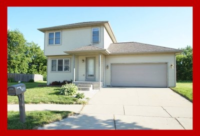 Sun Prairie Single Family Home For Sale: 732 Bluestem Ct