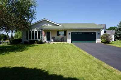 Dane County Single Family Home For Sale: 6302 Dylyn Dr