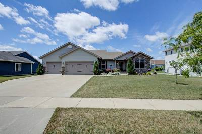 Sauk County Single Family Home For Sale: 521 20th St