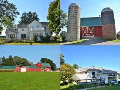 Deforest Single Family Home For Sale: 4653-00 Windsor Rd