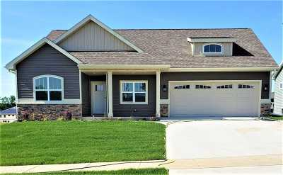 Dane County Single Family Home For Sale: 6270 Stone Gate Dr