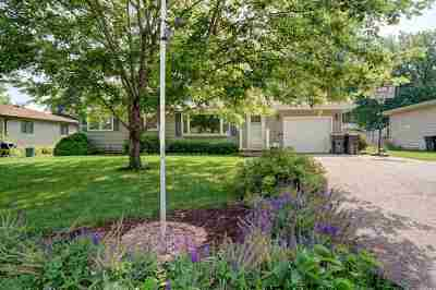 Dane County Single Family Home For Sale: 417 W Lincoln Dr