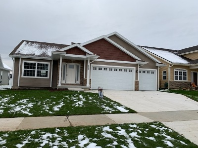 Dane County Single Family Home For Sale: 254 S Longfield Dr