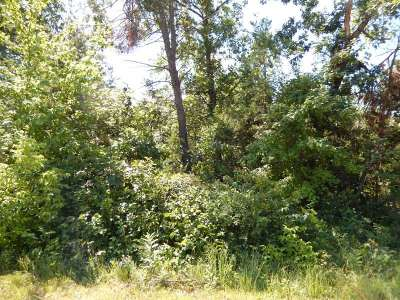Wisconsin Dells Residential Lots & Land For Sale: L1 Fur Ave